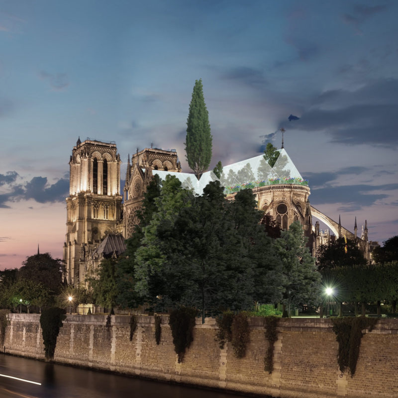 Notre Dame Spire Proposal